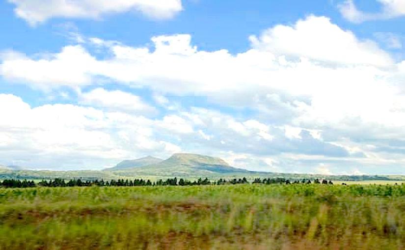 http://www.agenceecofin.com/images/news/0602-26368-l-industrie-sucriere-sud-africaine-pourrait-perdre-81-millions-de-en-raison-de-la-secheresse_L.jpg