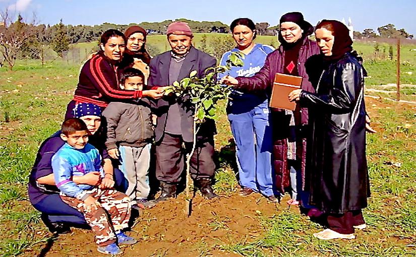 Crédit Photo: WVC 180022 (2006-04) SOS Village d'Enfants Draria (Alger)