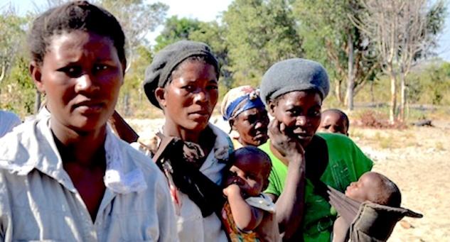 Sécheresse sévère au Nord de la Namibie - http://www.ifrc.org/PageFiles/126004/20130716-namibia-drought-main-1.jpg