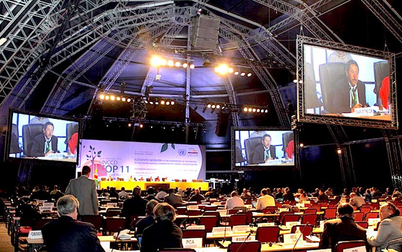 http://www.iisd.ca/desert/cop11/images/17sept/2cow-plenary_1527-s.jpg