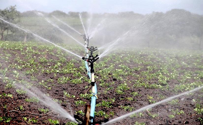 Le développement de l'irrigation auSénégal