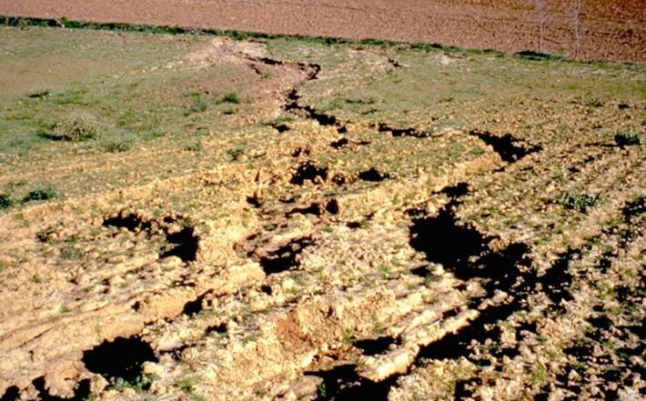 La dégradation des sols dans le monde - http://unt.unice.fr/uoh/degsol/photos/Degsol_Photos_nelle_taille/Lauragais_perte_sol_semences.jpg