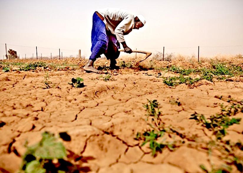 Primes d'assurances sécheresse  au profit de la  Mauritanie, du Niger et duSénégal